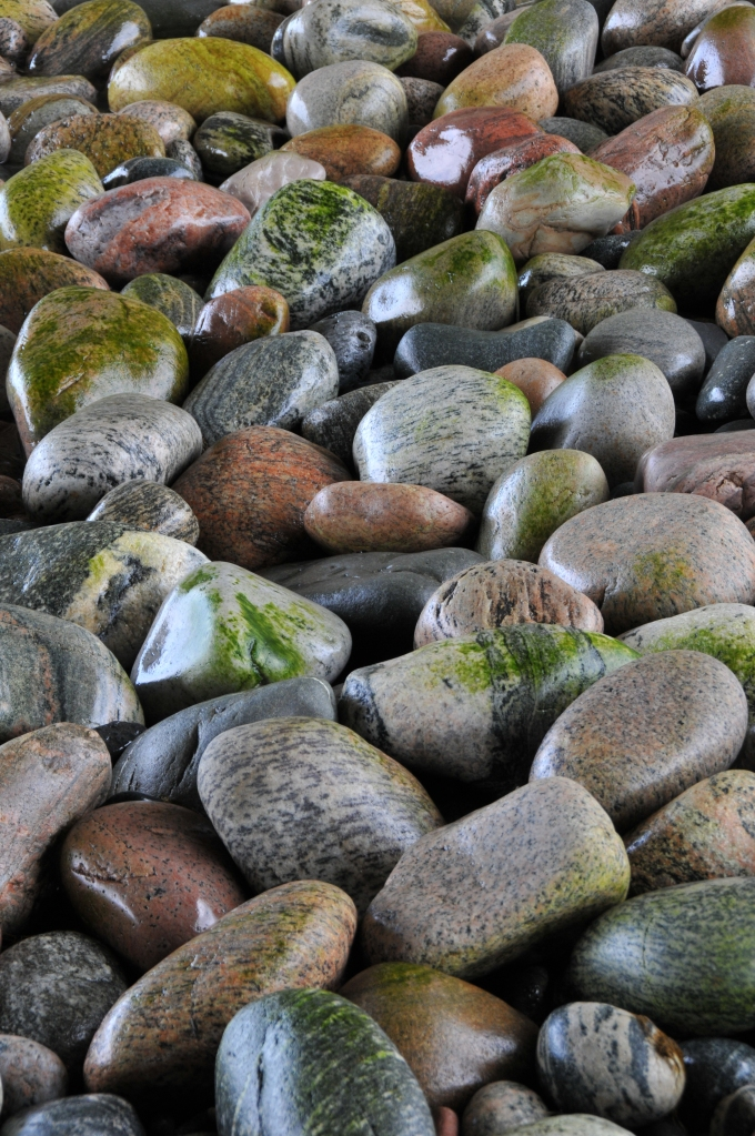 rocks on shore